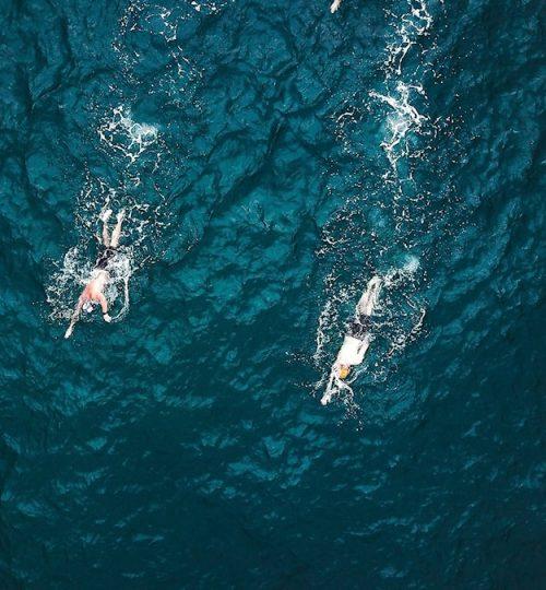 openwater_swim